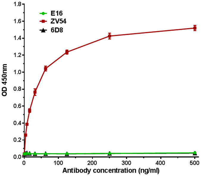 Specific binding of HBcAg VLP-displayed zDIII by monoclonal antibodies that recognize EDIII conformational epitopes. Serial dilutions of ZV54 and E16 mAbs that recognize a lateral ridge conformational epitope on EDIII of ZIKV and WNV, respectively, were incubated in microtiter wells coated with HBcAg-zDIII VLPs and detected with an <t>HRP-conjugated</t> goat anti-mouse <t>IgG</t> antibody. 6D8: an anti-Ebola isotype negative control mAb. Mean ± SD of samples from three independent experiments is presented.