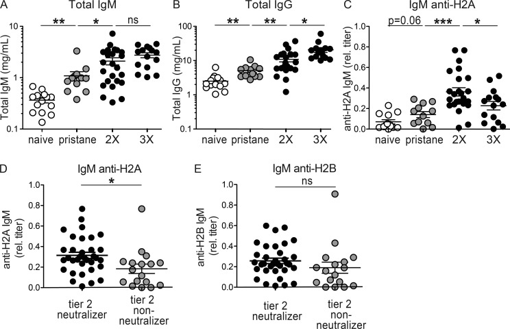 Elevated IgM anti-histone H2A titers correlate with tier 2 HIV-1 neutralization by pristane treated wild-type C57BL/6 mice. Total serum concentrations of (A) IgM, (B) IgG, and (C) relative titers of serum IgM anti-H2A are shown for naive (open circles) B6 mice or B6 mice treated 30 d with pristane only (gray circles) and subsequently immunized 2X or 3X (black circles) with alum alone or Env + alum. Serum from individual B6 mice (regardless of treatment with pristane alone, alum alone, or Env + alum) were separated based on neutralization of ≥1 tier 2 HIV-1 strains and measured for (D) IgM anti-H2A or (E) IgM anti-H2B relative titers. Mice neutralizing only tier 1 strains were included in the tier 2 nonneutralizer group (mostly 3X). Each symbol represents measurements for one mouse, and all data are plotted as the arithmetic mean ± SEM. All P-values were calculated using Student's t test assuming unequal variances. *, P