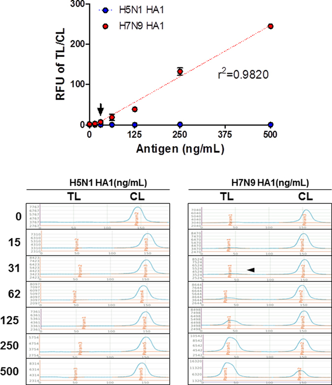 Detection limit of FICT assay for target antigen. FICT employing Europium-conjugated antibodies were tested for the limit of detection (LOD) against <t>H7N9</t> rHA1 ( A ). The data ( n = 3) are shown as mean ± SD. Linear regression is shown with the dotted line. The arrow indicates the antigen concentration of LOD. Raw fluorescence peaks from the test line (TL) and control line (CL) in FICT are shown in the bottom panel.