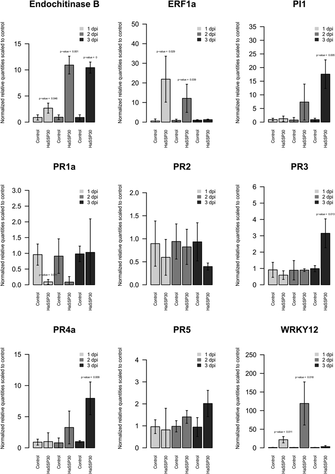 Gene expression levels of several markers related to plant immunity in Nicotiana benthamiana leaves transiently expressing HaSSP30 for 1, 2, and 3 days. Nicotiana benthamiana leaves were infiltrated with Agrobacterium tumefaciens GV3101 carrying either the pICH86988-empty (Control) or pICH86988-HaSSP30 (HaSSP30) vector. The plants were incubated in a plant growth room with 12 h/12 h, night/day photoperiods at 20–24 °C with 60% relative humidity (RH). The leaves were harvested after 1, 2, and 3 days post-infiltration (dpi). Total RNA was extracted and reverse transcribed into <t>cDNA.</t> The <t>qPCR</t> was performed on the cDNA using specific primers for several genes related to activation of plant immunity. Two reference genes were used to normalize the data, which are presented as normalized relative quantities scaled to control. Error bars indicated the standard deviation (SD) of 3 independent replicates (n = 3). Two-tailed Student t-test was used to compare HaSSP30 versus Control in each day and p-values