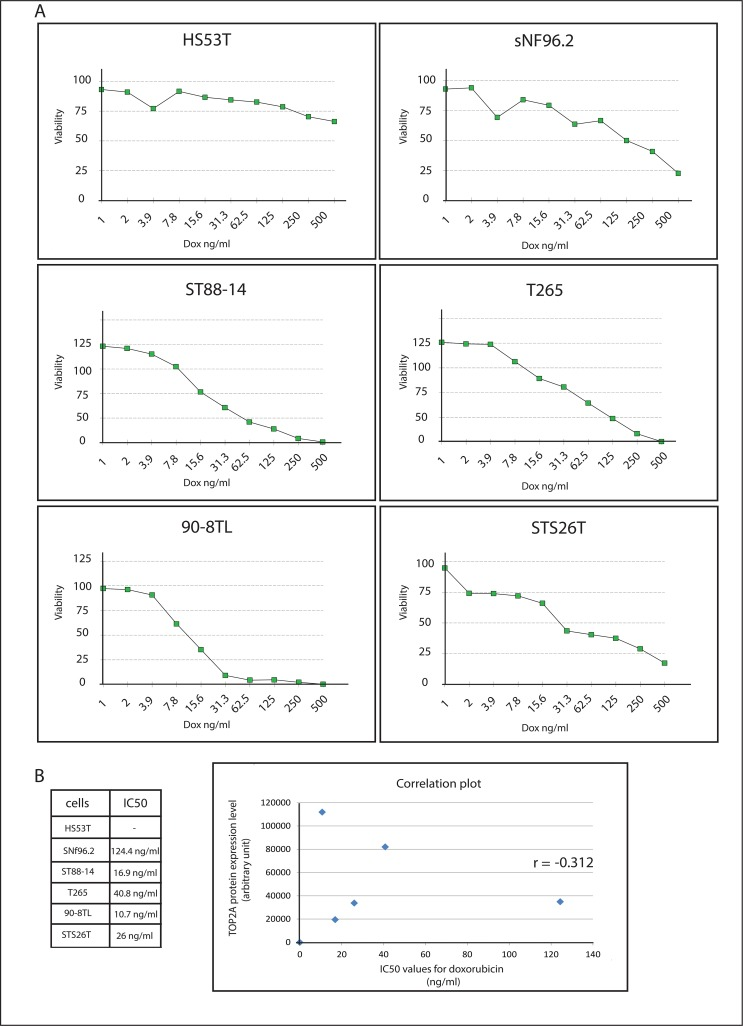 Sensitivity of neurofibroma and MPNST cell lines to doxorubucin. ( A ) An in vitro cytotoxicity assay (SRB assay) was used to determine IC 50 values (ng/ml) for doxorubucin of neurofibroma and MPNST cell lines after a 48h exposure to the drug. Graphs show cell viability as a function of doxorubucin concentration. Depicted is the average viability (n = 4) of a representative experiment. ( B ) Listing of calculated IC 50 values and correlation plot, with <t>TOP2A</t> protein expression levels on the Y-axis and IC 50 values for doxorubicin on the X-axis. Pearson correlation coefficient is depicted in the graph.