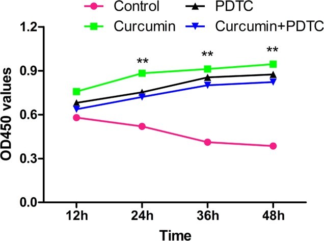 Effect of curcumin on chondrocyte proliferation activity. Isolated rat articular chondrocytes were treated with 10 ng/ml interleukin-1β for 24 h, and subsequently co-treated with 50 µM curcumin, 0.1 mmol/l PDTC, or curcumin plus PDTC. Proliferation of chondrocytes at 12, 24, 36 and 48 h was assessed by Cell Counting kit-8 assays. Data are presented as the mean ± standard deviation. **P