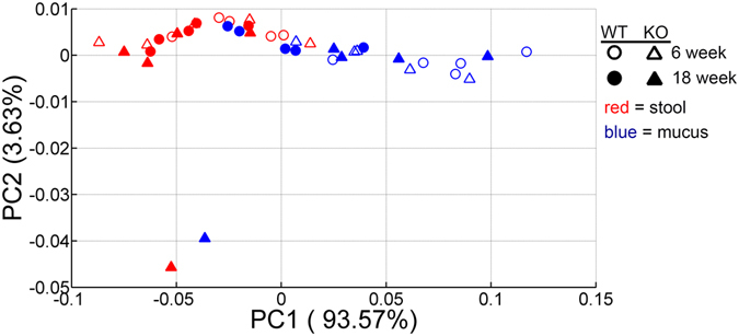 Stability of the microbial functional potential prior to the development of colitis. Microbial genes were inferred by PICRUSt from 16S rRNA gene sequences and assigned to functional pathways as organized in KEGG database. Principal Coordinate Analysis (PCoA) plot of Bray-Curtis distance comparing microbial functional profiles between mdr1a −/− and WT littermates at 6 and 18 weeks showed clustering of samples according to sampling location (i.e. mucus and stools). Bray-Curtis distances were calculated based on KEGG pathway abundance values. WT mice are shown in circles and knockout (KO) mice in triangles; open symbols correspond to 6 weeks whereas filled ones to 18 weeks. Mucus is depicted in blue and stools in red.