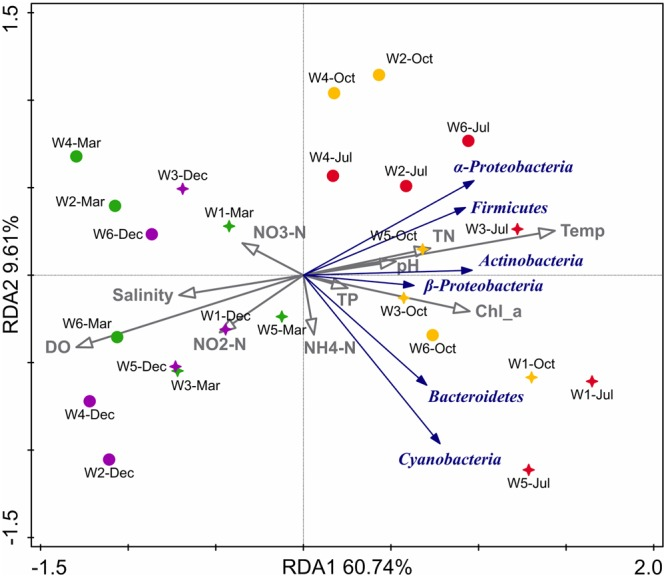 Biplot of redundancy analysis (RDA) showing relationship between the environmental variables and 16S rRNA gene abundance (qPCR quantification) of major phylogenetic groups in six stations near Qinhuangdao coastal area. The two RDA axes (RDA1 and RDA2) explained 70.35% of total variation in abundance data, and the significant ( p