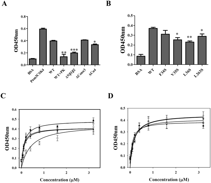 The ELISA assay of the interaction between TLR2 protein and LipL32 variants. ( A ) The interaction of TLR2 protein and LipL32 truncated variants. The protein concentration of LipL32 and TLR2 protein were 1 µM. BSA and Pam 3 CSK 4  were served as negative and positive controls. WT+PK indicated the LipL32WT pretreated with proteinase K for ELISA assay. ( B ) The interaction of TLR2 protein and LipL32 point mutation variants. ( C ) The dose dependent ELISA of the interaction between LipL32ΔCenα3 variant and TLR2 protein. ○, LipL32WT in the presence of 1µM Ca 2+ ; ●, LipL32WT in the presence of 1µM EGTA; ▼, LipL32ΔCenα3 in the presence of 1µM Ca 2+ ; △, LipL32ΔCenα3 in the presence of 1µM EGTA. ( D ) The dose dependent ELISA of the interaction between LipL32 point mutation variants and TLR2. ○, D195A variant in the presence of 1µM Ca 2+ ; ●, D195A variant in the presence of 1µM EGTA; ▼, D196A variant in the presence of 1µM Ca 2+ ; Δ, D196A in the presence of 1µM EGTA. *p