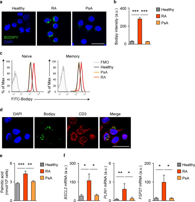 CD4 T cells from RA patients accumulate cytoplasmic lipid droplets CD4 + CD45RA + T cells from RA patients and age-matched healthy individuals were stimulated for 96 h and stained with BODIPY (493/503) to quantify intracellular lipids. ( a ) Confocal microscopy imaging of intracellular lipid droplets (green) in RA CD4 + T cells. Scale bar, 20 μm. ( b ) Fluorescent Bodipy quantification in activated CD4 + CD45RA + T cells from 10 RA patients, 6 PsA patients and 10 healthy individuals. ( c ) Intracellular neutral lipids labeled with Bodipy in naive and memory populations of CD4 + T cells from healthy controls, RA patients and PsA patients. Representative histograms from 3 experiments. ( d ) Frozen sections from RA synovial tissues were stained with Bodipy (493/503) and analyzed by fluorescence microscopy. Representative images show accumulation of lipid droplets (green) in tissue-residing CD3 + T cells (red). Scale bar, 20 μm. ( e ) Palmitic acid measured in activated CD4 + CD45RA + T cells from 8 RA patients, 8 healthy donors and 4 PsA patients. ( f ) Expression levels of genes involved in lipid droplet formation from 6 RA patients, 5 PsA patients and 6 controls. All data are mean ± s.e.m. * P