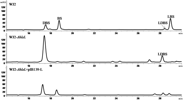 """HPLC analysis of fermentation products of BS heterologous producer strain S. lividans WJ2 and two mutant strains WJ2 (Δ blsL ) and WJ2 (Δ blsL ):: blsL . The column used for analysis of metabolites here is <t>Innoval</t> <t>C18</t> column (4.6 mm × 250 mm, Agela Technologies), and the elution conditions please refer to the Section """"Materials and Methods."""""""