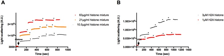 Effect of cofilin on the light scattering of histone mixture or H2A histone bundled MgF-actin. 4x 2 μM cofilin was added to 4 μM MgF-actin bundled by 63 μg/ml histone mixture (A), or by 4 μM (56 μg/ml) H2A histone (B). Stars indicate addition of 2 μM cofilin. Light scattering change was followed as described in MATERIALS and METHODS. Presented data are representative of three independent experiments.