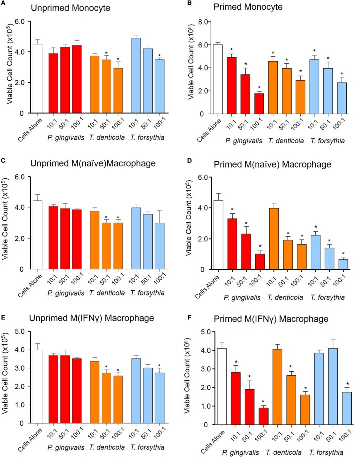 Periodontal outer membrane vesicle (OMV) cytotoxicity differs between unprimed and primed THP-1 cells. Cytotoxicity assays were performed on THP-1 monocytes, M(naïve), and M(IFNγ) macrophages left unprimed (A,C,E) or primed for 3 h with a low dose of Porphyromonas gingivalis OMVs (B,D,F) . Cells were treated with periodontal OMVs in increasing OMV to cell ratios (10:1, 50:1, and 100:1) in cell suspension for 4 h. Cell viability was determined by trypan blue exclusion and deteriorating cell counts determined by hemocytometer and a Z1 Coulter Particle Counter. Results are displayed as the number of remaining viable cells after 4 h. Data are represented as mean ± SEM of three replicates. *represents a significant ( p