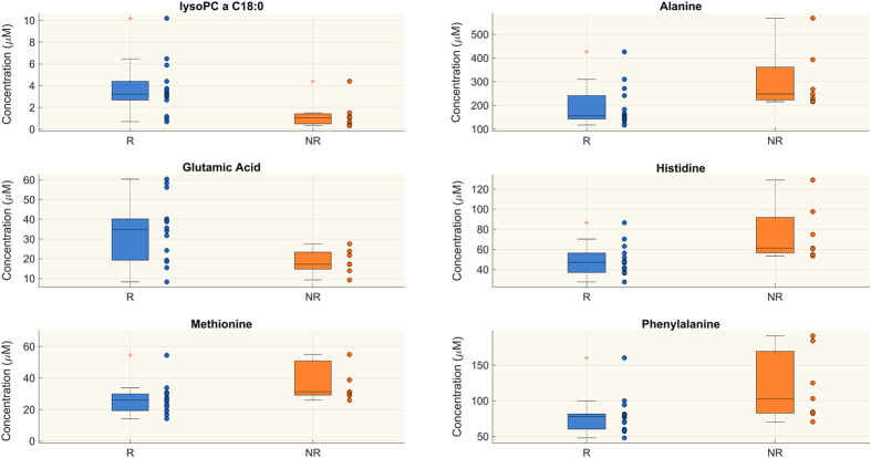 Targeted metabolomics. Metabolites whose concentration (μM) is significantly different between responsive (R) and non-responsive (NR) patients at T2 (Wilcoxon rank-sum test p-value