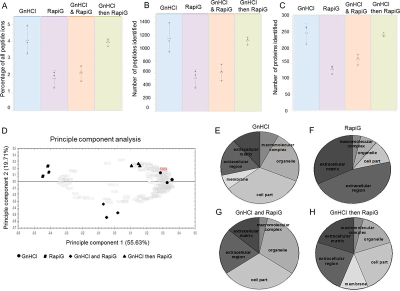 (A‐C) Quality control and label free quantitative analysis comparison between GnHCl, RapiGest™, GnHCl and Rapigest™, and GnHCl followed by RapiGest™ using Progenesis QI software. The variation in percentage of all peptide ions (A), number of peptides (B) and proteins (C) was presented for each extraction method. (D) PCA plot of all methods, GnHCl followed by RapiGest™ samples grouped closer together. (E‐H) Significantly abundant proteins (fold change > 2 and p