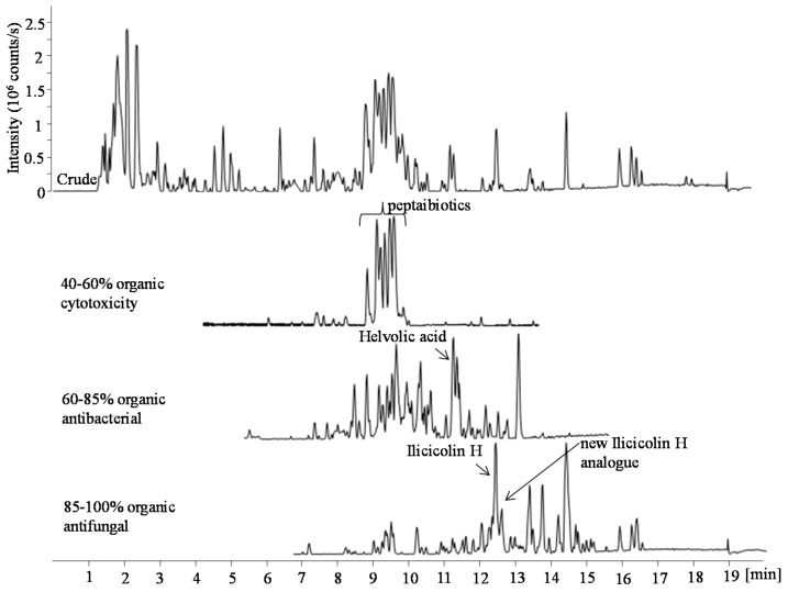 Base peak chromatograms (BPC) of the EtOAc crude extract and three bioactive fractions (ranging from 40% to 100% organic) in positive electrospray ionization (ESI) mode. The fractions were obtained by RP flash chromatography with a gradient of MeCN and water going from 15% to 100% MeCN. In the bioactive fractions the marked peaks indicate the tentatively identified peptaiboitics, <t>helvolic</t> acid, ilicicolin H, and a potential new ilicicolin H analogue.