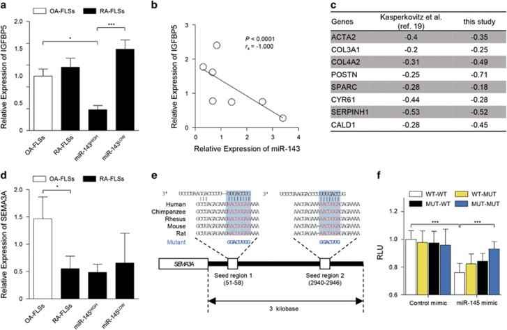 Validation of IGFBP5 and SEMA3A as miR-143 and miR-145 targets, respectively. ( a ) Comparison of IGFBP5 mRNA expression between RA-FLSs ( n =7) and OA-FLSs ( n =10), which was determined by real-time PCR. GAPDH mRNA was used as an internal control. miR-143 HIGH ( n =3) and miR-143 LOW ( n =4) indicate RA-FLS subsets with higher and lower expression of miR-143, respectively. ( b ) Negative correlation between miR-143 and IGFBP5 expression in RA-FLSs ( n =7). ( c ) Negative correlation of IGFBP5 gene expression levels with eight TFGβ-responsive genes in RA-FLSs ( n =19) used in the previous study by Kasperkovitz et al. 19 (GSE4061) and those ( n =6) in this study (GSE22956 and GSE49604). ACTA2 , Actin, Alpha 2, Smooth Muscle, Aorta; COL3A1 , Collagen Type III Alpha 1 Chain; COL4A2 , Collagen Type IV Alpha 2 Chain; POSTN , Periostin; SPARC , secreted protein acidic and rich in cysteine; CYR61 , Cysteine Rich Angiogenic Inducer 61; SERPINH1 , Serine (or Cysteine) Proteinase Inhibitor, Clade H (Heat Shock Protein 47), Member 1 (Collagen Binding Protein 1); CALD1 , Caldesmon 1. Values are Pearson's rho coefficients. ( d ) SEMA3A mRNA expression in RA-FLSs ( n =7) versus OA-FLSs ( n =10). miR-145 HIGH ( n =3) and miR-145 LOW ( n =4) indicate RA-FLS subsets with higher and lower expression of miR-145, respectively. ( e ) Sequence of miR-145 seed regions in the SEMA3A 3′-UTR. The mutation sequences are indicated in blue. ( f ) Relative normalized Renilla luciferase activity of reporter vector containing putative miR-145 binding sites (WT) or its mutated version (MUT). HEK293T cells were transfected with reporter vectors in the presence or absence of control mimic or synthetic miR-145 miRNA mimic. Single mutants of two putative miR-145-binding sites (seed regions) are indicated as WT-MUT or MUT-WT. A double mutant is denoted as MUT-MUT. RLU, relative light unit. The data show the mean±s.d. of three independent experiments. * P