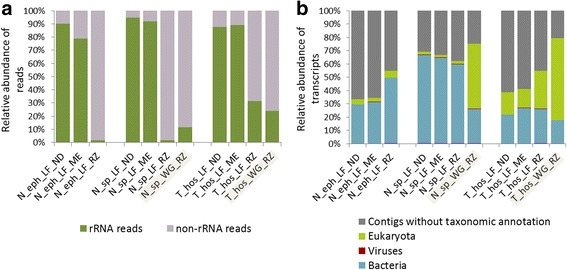 Comparison of the efficacy of the two studied metatranscriptomic pipelines versus the non-depleted control. The performance of two pipelines, RZ and ME, was tested for three termite species: N. ephratae , N. sp. and T. hospes. LF corresponds to luminal fluid and WG to whole termite gut RNA preparations. a Proportion of rRNA reads detected in the different metatranscriptomic libraries for the two studied pipelines and the non-depleted control. WG sampling strategy was only assessed with the pipeline RZ for T. hospes and N. sp. preparations. b Relative abundance of transcripts with no taxonomic assignment and assigned as of prokaryotic (archaea and bacteria), eukaryotic or viral origin