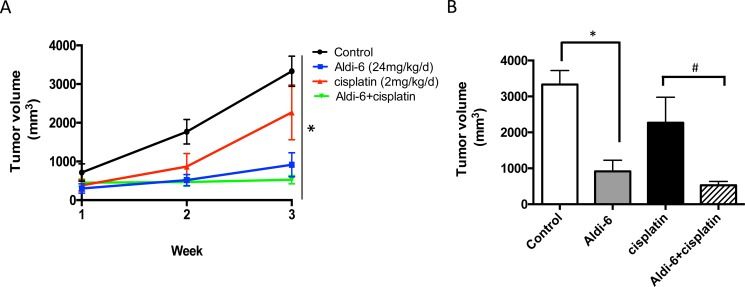 Aldi-6 reduces HNSCC tumor growth rate in vivo ( A ) SCC4 cells (2 × 10 6 ) were subcutaneously injected into the flanks of NOD- scid IL2Rgamma null mice ( n = 3–6 per group). Mice were treated systemically with Aldi-6, using implantable osmotic mini pumps (24 mg/kg/day) for continuous delivery of the compound. Cisplatin was administered by weekly i.p. injection (2 mg/kg) for 3 weeks. Tumor size was measured weekly for three weeks. One-way ANOVA analysis was performed on the final tumor size (* p