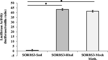 In vitro DNA methylation of the SORBS3 human promoter is associated with decreased gene expression. Data presented as mean ± SD. The mean represents four independent experiments with five replicates per experiment. * P