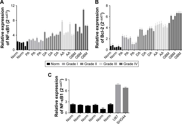 Expression of NF-κB1 and Bcl-2 detection in glioma tissues by <t>qRT-PCR.</t> Notes: The expression of NF-κB1 in glioma was significantly higher than that in nonneoplastic brain tissues ( P