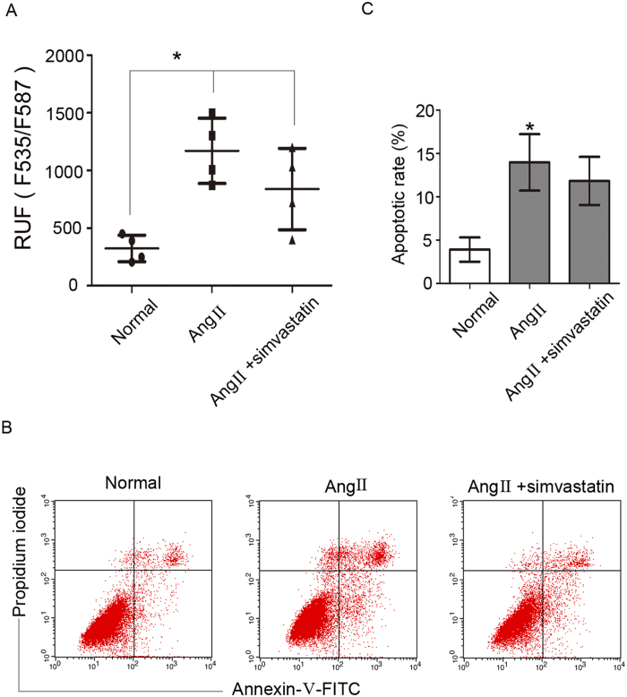 <t>Simvastatin</t> did not improve Ang II-induced podocyte cholesterol accumulation and apoptosis. Podocytes were pretreated with simvastatin and stimulated with Ang II. ( A ) Quantitative analysis of the fluorescence intensity in different groups, demonstrating that there was no difference in fluorescence intensity between the Ang II + simvastatin group and the Ang II group. n = 4, * p