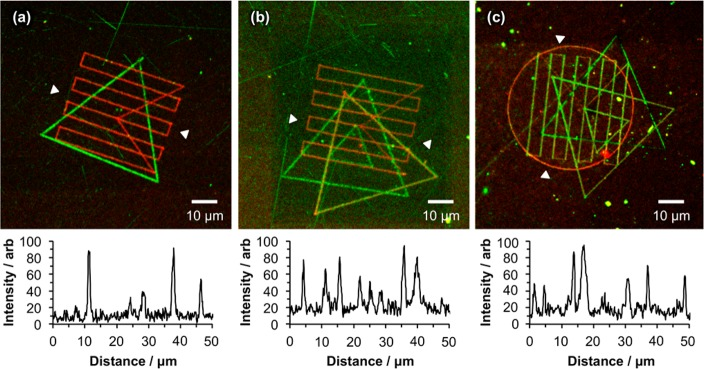 Stepwise assembly of multiple component protein nanopatterns using near-field lithography. (a) GFP + <t>streptavidin-Atto</t> 655. (b) IgG-FITC + streptavidin-Atto 655 + streptavidin-Atto 488 (c) IgG-FITC + streptavidin-Atto 655 + streptavidin-Alexa Fluor 488 + streptavidin-Alexa Fluor 750. A representative line section is provided beneath each micrograph, measured between the white arrowheads marked on each.