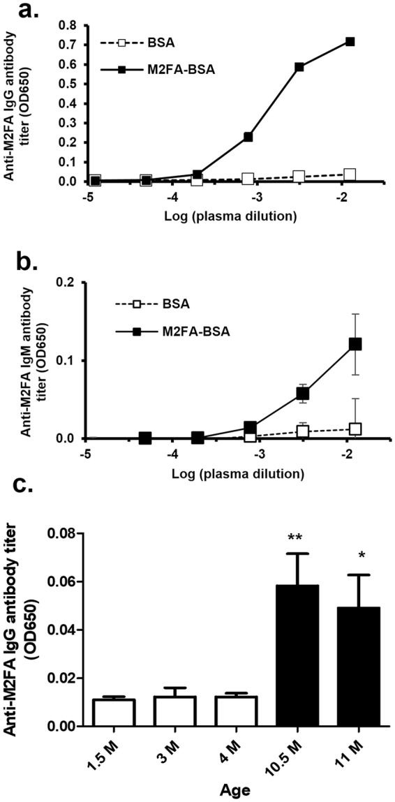 The immunogenicity of M2FA-lysine-BSA in the absence of adjuvant and anti-M2FA antibody titers in intact mice. C57BL/6 mice were injected i.p. with M2FA-lysine-BSA or BSA in the absence of adjuvant. The antibody titers of IgG ( a ) and IgM ( b ) against M2FA-lysine were detected using MFA-6ACA-KLH-coated plates. The anti-M2AA antibody titers were clearly increased in M2FA-lysine-BSA-immunized mice compared to the controls (BSA-treated mice). Values are mean and SD. ( c ) Intact female C57BL/6 mice (n = 4 or 5 per group) with different ages showed significantly different anti-M2FA IgG titers. Values are mean and SD. (*p