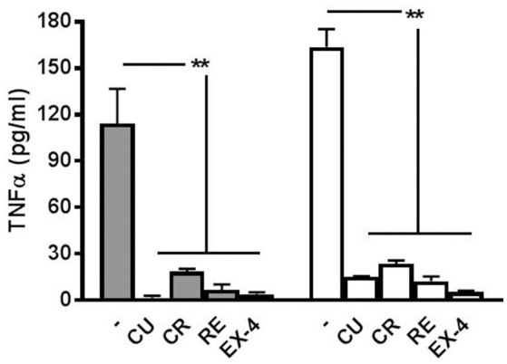 Release of TNF-α at 6 and 12 h after LPS application. The cytokine TNF-α is released from LPS-treated networks but not from networks pre-treated with polyphenols or exendin-4. Graph shows TNF-α concentration 6 h (filled bars) and 12 h (open bars) post-LPS (3 μg/ml) treatment with or without curcumin (CU, 1 μM) crocin (CR, 20 μM), resveratrol (RE, 200 nM) or exendin-4 (EX-4, 30 nM) pre-conditioning. Data are expressed as pg/ml and represent mean ± SEM of three independent experiments. ** P