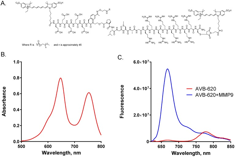 AVB-620 structure, absorbance and fluorescence properties. (A) Structure of AVB-620. (B) Absorbance spectrum of 17.5 µg/mL AVB-620 in 80/20 PBS/acetonitrile from 500-800 nm. (C) AVB-620 fluorescence emission spectrum in TCNB buffer using 630 nm excitation and an emission wavelength range of 620-850 nm (red trace). Addition of MMP9 hydrolyzes AVB-620, disrupting FRET between Cy5 and Cy7 dyes, and results in large fluorescence change (blue trace). Representative spectra are shown from six experiments.