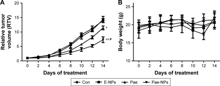 In vivo antitumor efficacy of Pae-NPs. Notes: The mice were intravenously administered with PBS, E-NPs, free Pae, or Pae-NPs every 2 days for three consecutive injections. ( A ) Growth inhibition study in the A549 xenograft model. ( B ) Body weight changes for the tumor bearing mice after various formulations were given to mice on the indicated days. Data are represented as mean ± SD (n=6). * p