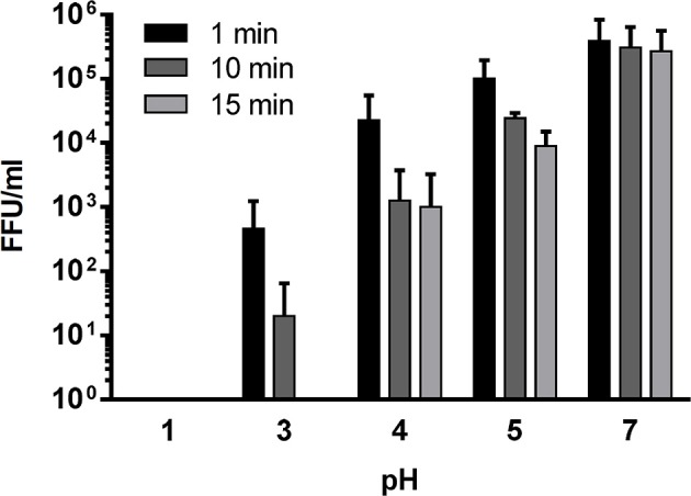 Hantavirus survival in gastric juice. Infectious dose of 10 6 Puumala virus particles was suspended to pure gastric juice set to pH 1–7 with NaOH for 1, 10, or 15 min. After given incubation intervals the gastric juice was neutralized with NaOH and the virus suspension was used to infect VERO-E6 cells for focus titration of infectious particles ( n = 4). As at low pH the inactivation activity was expected to be high pH 2 was omitted to save valuable sample volume.