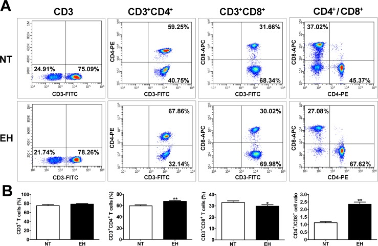 EH induced changes in subtypes of peripheral blood T lymphocytes. A, Representative flow cytometry analysis showing expression levels of circulating subtypes of T lymphocytes in the peripheral blood of 20 EHs and 20 age- and sex-matched NTs. Fresh, resting PBMCs from EHs and NTs were stained with antibodies against CD3, CD4, and CD8 molecules and analyzed by flow cytometry. Based on the CD3 + gate, cells were further gated based on CD4 or CD8 expression and the frequency of CD4 + or CD8 + T cells was determined. B, Frequency of CD3 + , CD4 + , and CD8 + T cells in the peripheral blood of EHs and NTs. Fresh, resting PBMCs from EHs and NTs were stained with anti-CD3, anti-CD4, and anti-CD8 and then the cells were gated for CD3 positive cells, CD3 and CD4 or CD8 double positive cells after gating for lymphocytes by forward and side scatters. The vertical axis represents the frequency of various T lymphocyte subtypes. Quantitative analysis of the mean percentage of cells ± SEM. * p
