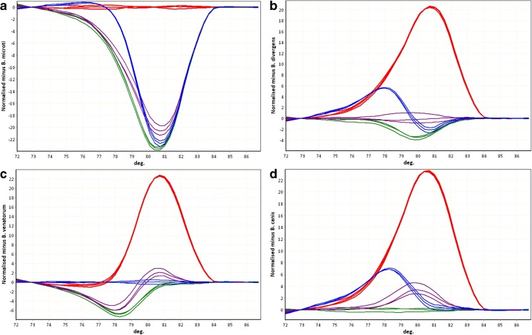 Babesia species discrimination by difference curves. Red B. microti , purple B. divergens , blue B. venatorum , green B. canis . The multiplex PCR products obtained from DNA of the following species were used as the references for difference curve plot. a B. microti . b B. divergens . c B. venatorum . d B. canis . Melting curves were automatically normalized and a reference curves were selected by the user. Values of each curve were automatically subtracted, by the software, from the values of the user selected reference curve and the results were presented on the plot. The more similar are two curves the closer the plotted line should be to a straight horizontal line (such as the repeats of the reference species curve on the plot of difference curves). The differences between the melting curves of the multiplex PCR products are emphasized on difference plots and observed as the differences in the shapes of the difference curves. Such curve shape differences correspond to the differences at the level of nucleotide sequence (only those sequence alterations that cause DNA melting temperature change). Differentiation of all four tested Babesia species was possible for each of the four species used as a reference—each species had unique difference curve shape