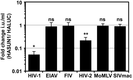 SUN1 inhibits HIV-1 and HIV-2 ROD , but not SIV mac , FIV, EIAV, or MoMLV infection. U87MG CD4/CXCR4 cells expressing HALUC or HASUN1 were infected with serial dilutions of the indicated VSV-G-pseudotyped GFP retroviral vector, and infectious titers (infectious units [i.u.] per milliliter) were determined. Fold changes of infectious titers (HASUN1/HALUC) were calculated for at least eight different doses of two biological replicates for each vector, and mean values with standard deviations are shown. A paired two-tailed t test was performed. *, P