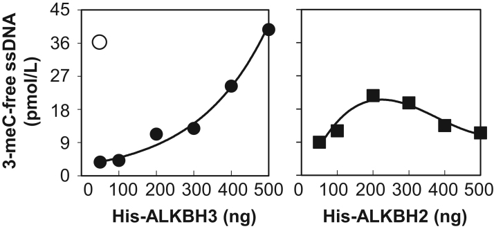 Comparison of 3-meC ssDNA demethylase activity of ALKBH2 and ALKBH3 from E. coli and FLAG-His-ALKBH3 from silkworms. Concentration-dependent demethylase activity of ALKBH2 and ALKBH3 from E. coli were determined in our qRT-PCR assay and compared to the activity of 4 ng of recombinant FLAG-His-ALKBH3 from silkworms (open circle). Data shown are representative of three independent experiments.