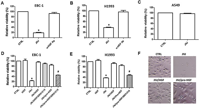 HGF rescues MET-amplified lung cancer cells from MET inhibition EBC-1 (A) and H1993 (B) MET-amplified lung cancer cells, and A549 cells (C) which do not have amplified MET were treated with JNJ38877605 (JNJ) (25 nM) or HGF neutralizing antibody (α-HGF Ab). Cell viability was determined after 72 h by CellTiter Glo ® . (D and E) EBC-1 and H1993 cells were treated with JNJ38877605 (25 nM), HGF (100 nM) or pro-HGF (100 nM) as indicated. Cell viability was determined by CellTiter Glo ® . (F) Representative images of EBC-1 cells treated with JNJ38877605 alone or with HGF or pro-HGF after 72 h of treatment.