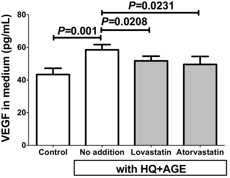 VEGF concentrations in h1RPE7 culture medium. The h1RPE7 human RPE cells were treated with no addition (control), or no addition, lovastatin or atorvastatin in the presence of HQ + AGE for 24 h. Data are expressed as mean ± SE for each group (n = 4).