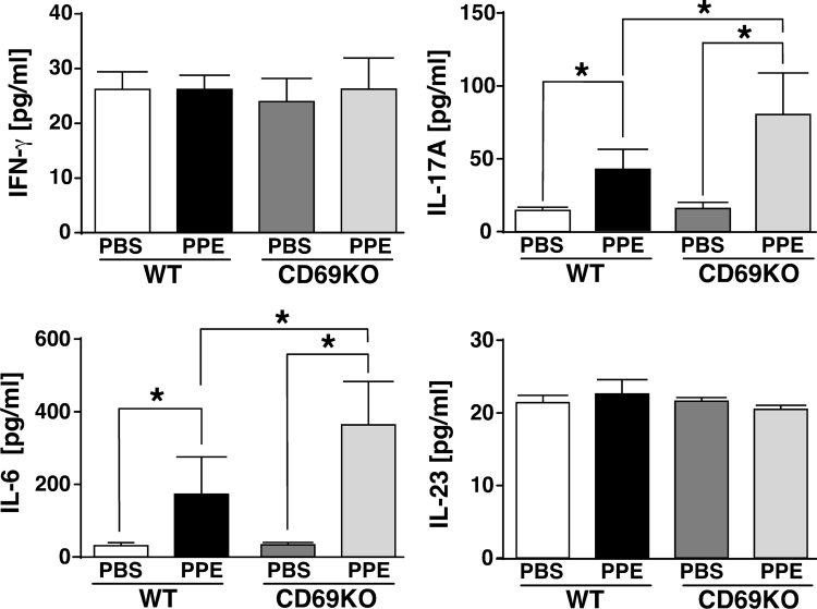 Changes in cytokine levels in BALF from WT and CD69KO mice. Concentrations of IFN-γ, IL-17A, IL-6 and IL-23 in BALF from the two genotypes at 1 dpi were determined by ELISA. Data are shown as mean±S.E.M. (n=6). * P