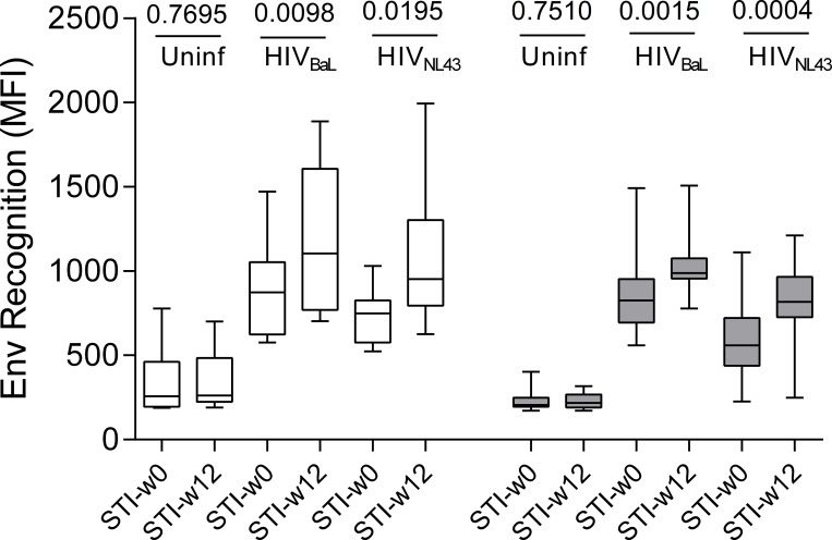 Structured treatment interruption (STI) increases levels of Env specific antibodies. Mean flourescence intensity (MFI) of stained MOLT cells expressing trimeric Env (from isolates HIV-1 NL4.3 and HIV-1 BaL ) or lacking Env expression (uninfected) is show for plasma samples obtained at the start (STI-w0) or after 12 weeks (STI-w12) into STI in the placebo (white, n = 10) or the vaccinated (grey, n = 15) group. P-values for Wilcoxon paired test comparing w0-STI values to w12-STI are shown on top of the figure.