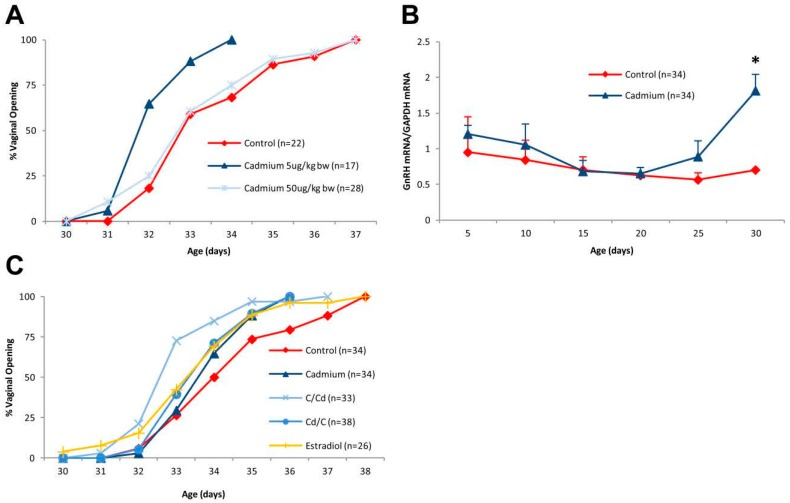 Effects of early life exposure to cadmium on puberty onset in female offspring. Pregnant female rats were treated with cadmium (5 or 50 μg/kg bw) by i.p. injection on days 12 and 17 of gestation and the female offspring were examined. ( A ) Effect of early life exposure to cadmium on the time of vaginal opening. Pregnant female rats were treated with cadmium (5 or 50 μg/kg bw) and the female offspring were monitored for vaginal opening ( n = 17–28 offspring/group); ( B ) effect of early life exposure to cadmium on the expression of GnRH in the hypothalamus. Pregnant rats were treated with cadmium (5 μg/kg bw) and the expression of GnRH in the female offspring was determined on postnatal days 0, 5, 10, 15, 20, 25, and 30. The amount of GnRH mRNA was determined by a qRT-PCR assay and normalized to the amount of glyceraldehyde 3-phosphate dehydrogenase (GAPDH) mRNA (mean ± SEM; n = 2–3 offspring/group; * p