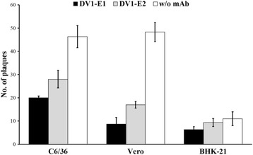 Inhibitory effect of anti-E mAbs on DV1 infection of C6/36, Vero, and BHK-21 cells. C6/36, Vero, and BHK21 cells were infected with DV1 in the absence or presence of DV1-E1 (dark column) or DV1-E2 (gray column). Mouse IgG (w/o mAb; white column) was used as the control for evaluation the inhibitory effects of two anti-E mAbs. After incubation at 37 °C for 48 h, the cells were harvested and the viral titers were determined by FFA. The data are the means and standard deviations from three independent experiments