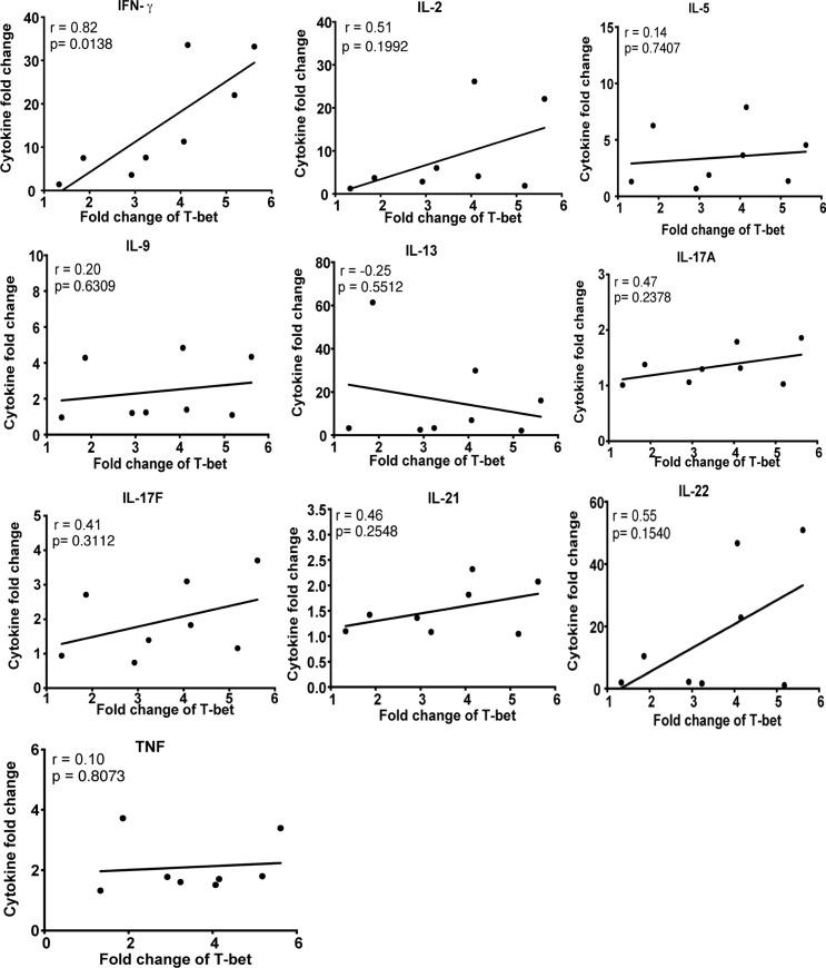 P . falciparum -induced IFN-γ correlates with T-bet expression in naïve B cells. PBMCs of healthy U.S. adults (n = 8) were stimulated in vitro with iRBC lysate or uRBC lysate for 3 days. Cytokine concentrations in the resulting supernatants were determined by a multiplex assay. Supernatants were transferred to PBMCs from the same U.S. adults (n = 8) in the presence of anti-IgM, followed by staining for T-bet, CD10, CD19 and IgD. Shown are correlations between fold changes in cytokine concentrations in supernatants of iRBC-stimulated vs. uRBC-stimulated PBMCs, and fold changes in T-bet expression in naïve B cells stimulated with supernatants of iRBC-stimulated vs. uRBC-stimulated PBMCs. Pearson correlation were used for correlative analyses. **** P