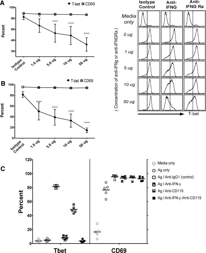 Blockade of P . falciparum -induced IFN-γ reduces T-bet expression in naïve B cells. T-bet and CD69 expression in naïve B cells (n = 5 U.S. adults) incubated with supernatants of iRBC-stimulated PBMCs plus anti-IgM in the presence of increasing concentrations of IFN-γ neutralizing antibodies ( A ) or IFN-γ receptor blocking antibodies ( B ) (representative histograms, right). ( C ) T-bet and CD69 expression in naïve B cells (n = 5 U.S. adults) incubated with supernatants of iRBC-stimulated PBMCs plus anti-IgM in the presence of IFN-γ neutralizing antibodies and IFN-γ receptor blocking antibodies separately or combined. Horizontal bars and whiskers represent means or median and SE. p values were determined by paired Student's t test with Bonferroni adjustments where appropriate. **** P