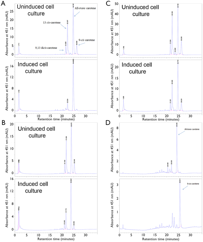 Reverse phase HPLC analysis of β-carotene cleavage by Lancelet BCOLg ( A ), lanBCOa ( B ), lanBCOc ( C ). HPLC profile of all- trans β-carotene and 9- cis β-carotene are presented in D panel.