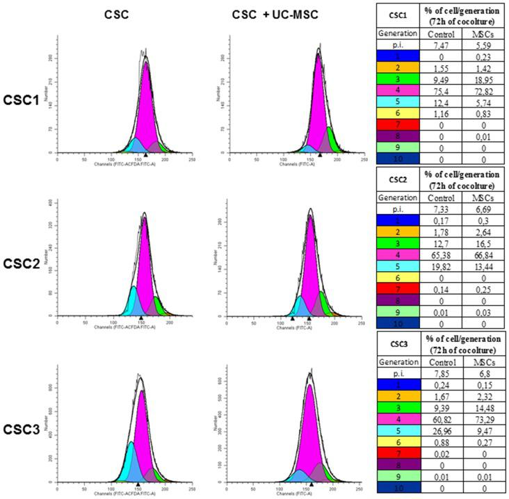 UC-MSC co-culture reduces GBM CSC proliferation rate. The proliferation rate of CSC1, CSC2 and CSC3 was tracked by carboxyfluorescein diacetate, succinimidyl ester (CFDA SE) dye dilution and analyzed by flow cytometry. The distribution of CSC1, CSC2 and CSC3 cells among generations after 72 h of co-culture with UC-MSCs (1:1) is depicted in histograms, each curve represents a new generation that occurred, starting from the parental cells (blue curve). The quantification of the data is summarized in the corresponding tables. Proliferation index (p.i.) is reported on the top of tables representing the sum of cells in all generations divided by the number of original parent cells. Representative data of three independent experiments using different UC-MSCs (1, 3 and 4) are shown.