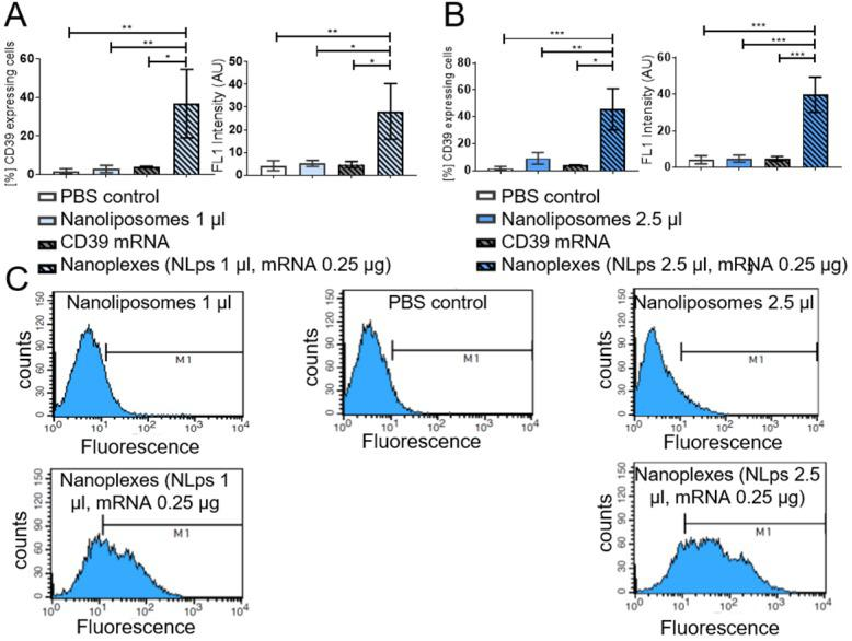 Flow cytometry demonstrating the transfection efficiency of CD39 mRNA nanoplexes in media without FBS in CHO cells. Significant transfection efficiency could be seen 24 h after transfection with CD39 mRNA using 1 μl (A) and 2.5 μl (B) nanoliposomes using an anti-CD39-FITC antibody in flow cytometry. The bar graphs depict the % of protein expressing cells, as well as the median fluorescence intensity AU. The different groups were compared using repeated ANOVA measures with Bonferroni post-tests. (C) Representative fluorescence histograms are shown underneath the bar graphs (mean ± SD, **p