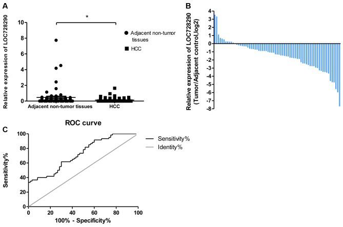 Relative expression of long non-coding RNA LOC728290 in patients with HCC. (A) Lower relative LOC728290 levels were exhibited in HCC tissues compared with adjacent non-tumor tissues from patients. (B) LOC728290 expression was classified into two groups: Positive values indicate higher LOC728290 expression in tumor tissue compared with non-tumor tissue; negative values indicate lower LOC728290 expression in tumor tissue. (C) The area under the receiver operating characteristic curve was 0.728, distinguishing HCC from adjacent normal tissues. *P