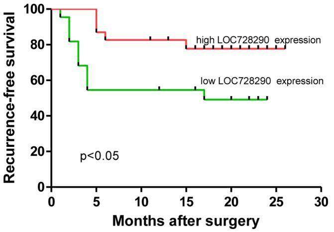 Kaplan-Meier estimator curves for recurrence-free survival in patients with hepatocellular carcinoma with low or high expression of LOC728290.