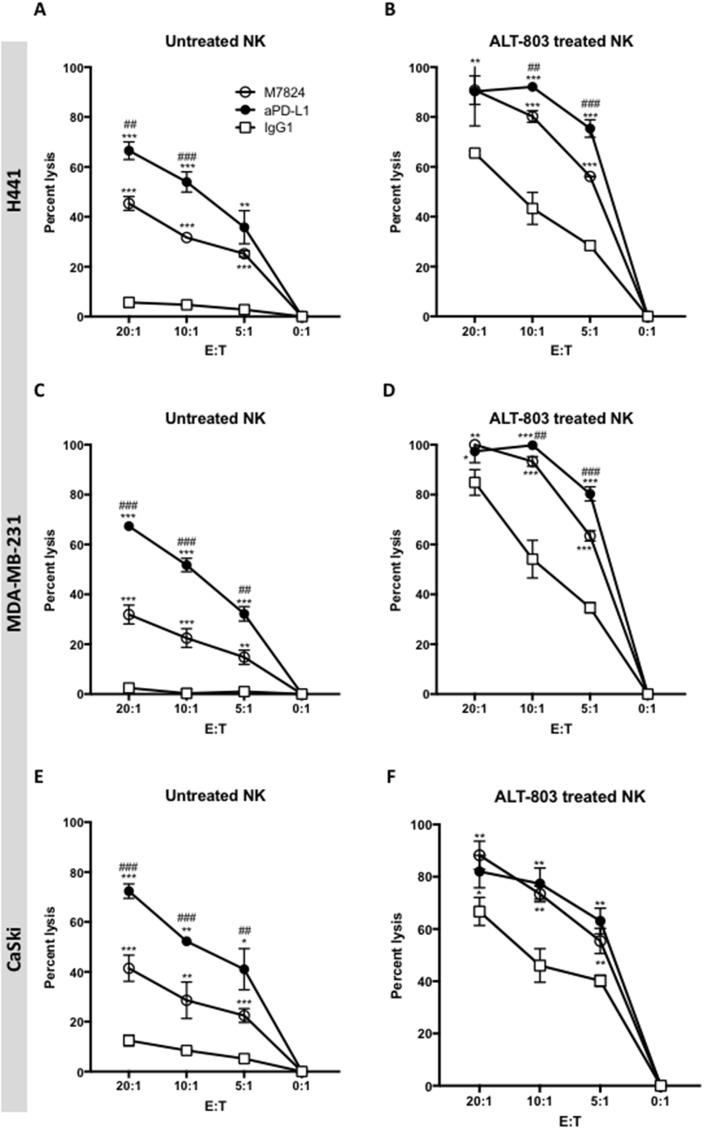 ADCC of tumor cells mediated by M7824 vs. anti-PD-L1, with and without pretreatment of effector NK cells with ALT-803 NK cells were isolated from PBMCs from three healthy donors, rested untreated (Panels A, C and E ) or treated (24 hours) with ALT-803 (Panels B, D and F ), and then used in 111 In-release 20-hour assays to evaluate NK tumor cell lysis (white squares, IgG1 1 μg/ml) and ADCC mediated by M7824 and anti-PD-L1. ADCC mediated by anti-PD-L1 is shown in black circles and ADCC mediated by M7824 is shown in white circles. Only isotype control IgG1 antibody is shown, since the no MAb control overlapped. Results from one of three healthy donors are shown at different E:T ratios, with mean and standard deviations of triplicate wells using as targets H441 (lung cancer, Panels A and B), MDA-MB-231 (breast cancer, Panels C and D), and CaSki (cervical cancer, Panels E and F). NK cells from the other two donors showed similar results. Results with the use of ALT-803–treated NK cells are shown in Panels B, D, and F. Multiple t-tests were used to compare ADCC mediated by anti-PD-L1 (black circles) vs. NK lysis (white squares), and ADCC mediated by M7824 (white circles) vs. NK lysis (white squares), at each E:T ratio, *** P