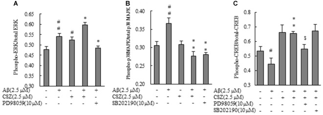 """Effects of CSZ on phosphorylation of extracellular signal-regulated kinase1/2 (ERK1/2), p38 MAPK and cyclic adenosine monophosphate response element-binding protein (CREB) in Aβ-stimulated <t>SH-SY5Y</t> cells. Phosphorylation of ERK1/2, p38 MAPK and CREB were examined using ELISA kit described in """"Materials and Methods"""" section. (A) ERK1/2 phosphorylation. (B) p38 MAPK phosphorylation. SH-SY5Y cells were incubated with or without pretreatment with CSZ for 1 h followed by treatment with Aβ for 30 min. The effects of respective inhibitor were also examined. (C) CREB phosphorylation. Values are expressed as mean + SEM # Compared vs. respective control cells ( p"""