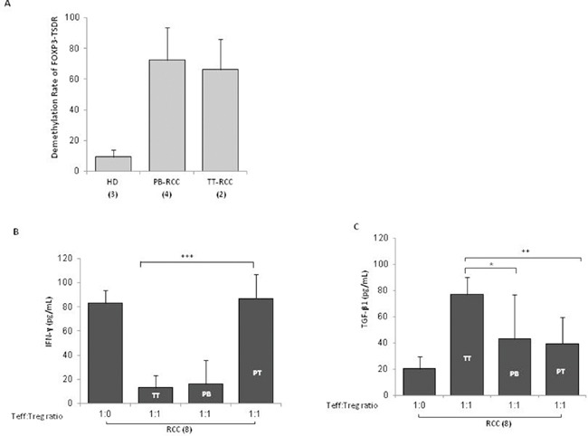 TT-Tregs are more suppressive than PB and PT-Tregs in RCC patients (A) Demethylation rate of FOXP3 -TSDR in TT-Tregs and PB-Tregs versus HD-Tregs (2 TT-Tregs vs 4 PB-Tregs vs 3 HD respectively). (B) IFN-γ-Treg dependent ELISA and (C) TGF-β1-Treg dependent ELISA from 8 RCC patients.