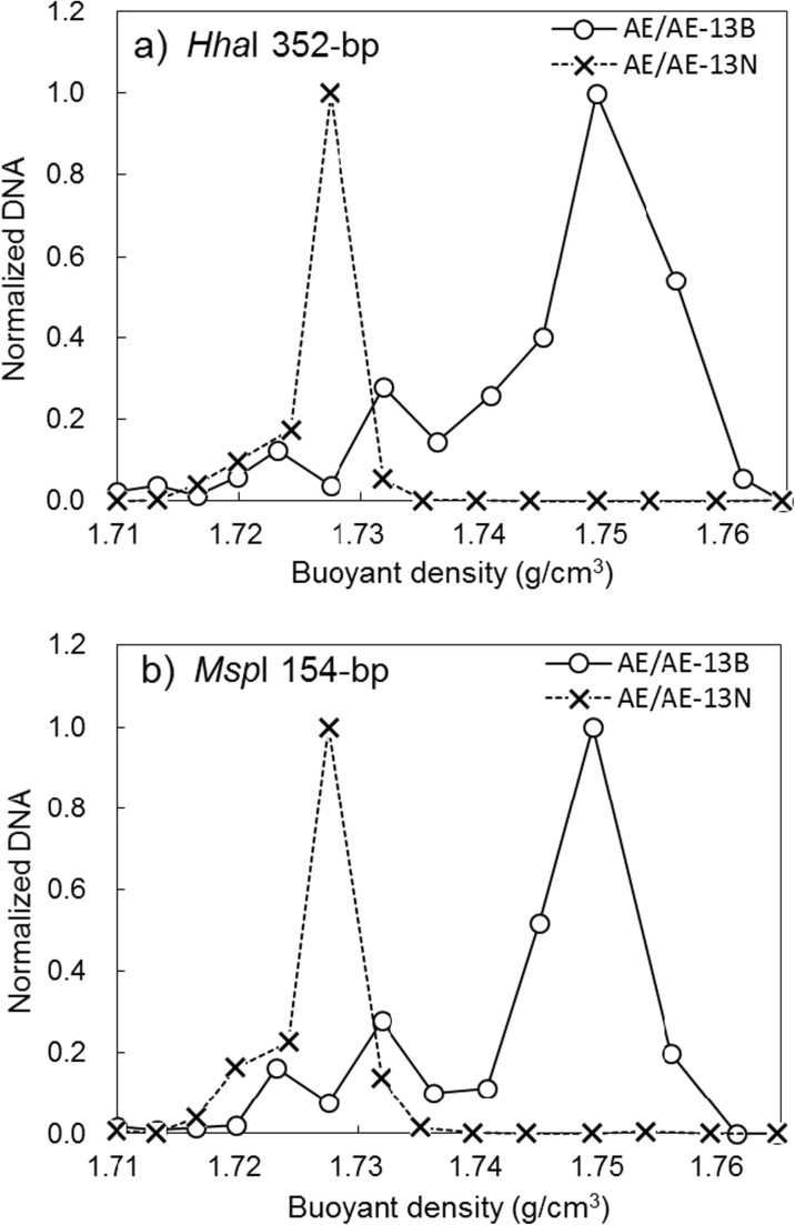Normalized DNA distributions of T-RFs in fractions from the 13 C-benzene labeled test (AE/AE-13B) and unlabeled test (AE/AE-13N). a 352-bp T-RF digested with Hha I. b 154-bp T-RF digested with Msp I