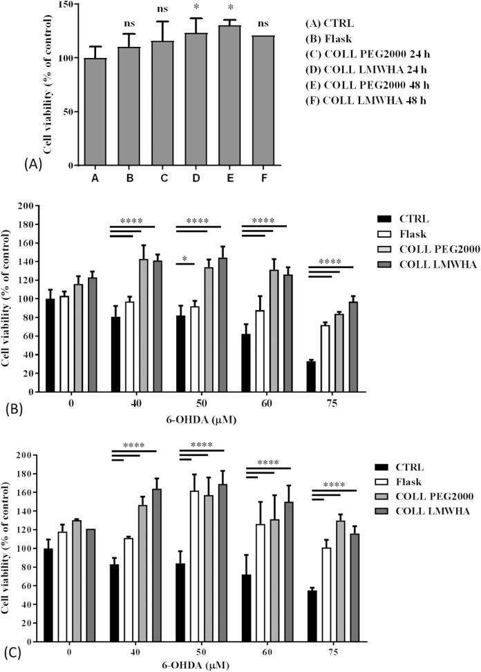 Cytocompatibility and antioxidant effect of conditioned media (CM) from hydrogel-embedded RAA-MSCs. (A) Metabolic activity of SH-SY5Y cells after 24 h incubation with CM from RAA-MSCs cells included in hydrogels. Statistical analysis was done considering αMEM without FBS as control. One-way ANOVA followed by Tukey's multiple comparisons test (mean ± SD, n = 5). * p = 0.0226 and 0.025, and ns: not significant. (B) Metabolic activity of SH-SY5Y cells exposed to hydrogel-embedded RAA-MSC CM, collected after 24 h conditioning followed by 24 h challenge with 6-OHDA. Results are mean ± SD (n = 12). Statistical analysis was done using two-way ANOVA followed by Tukey's multiple comparisons test: * p = 0.012; **** p